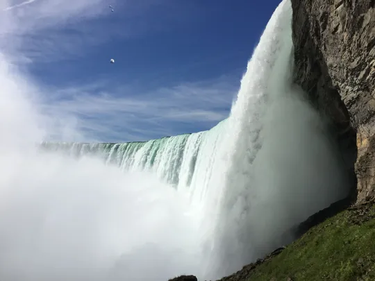 Absolute Unit Niagara Falls To His Death & Lives