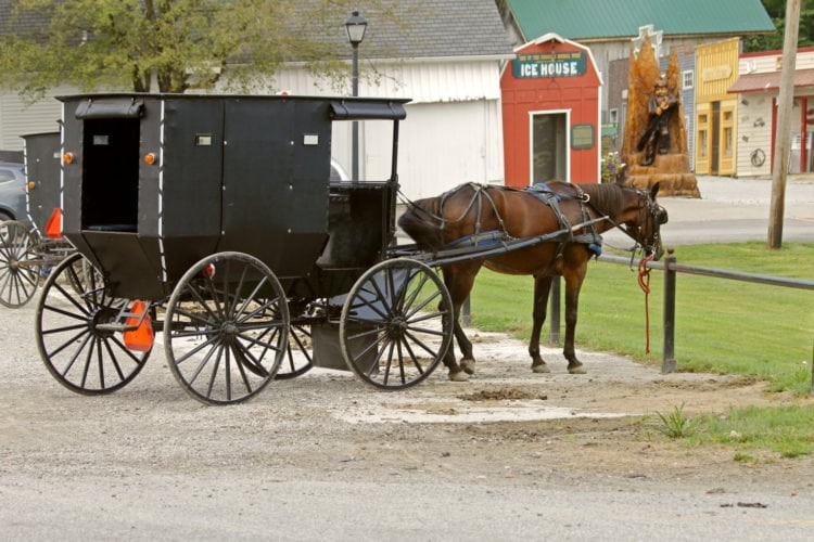 9706690027_ed08f8b42d_o_amish-horse-and-buggy-750x500