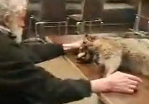 Homeless Man Brings Dead…