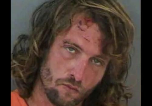 Florida Man Strikes Again,…