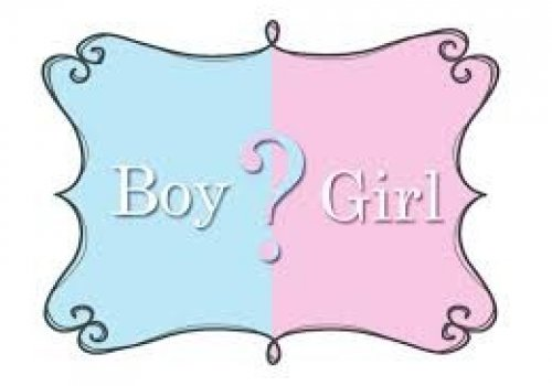 Crazy Gender Reveal!!